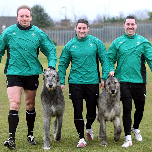 Roar on the Ireland Wolfhounds in Belfast