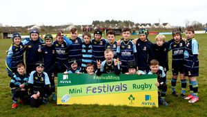 Aviva Mini Rugby Festival - Leinster Leg, Tullamore RFC, Saturday, April 7, 2018