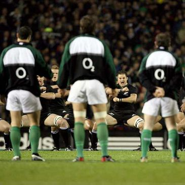 Ireland will take on the All Blacks next weekend