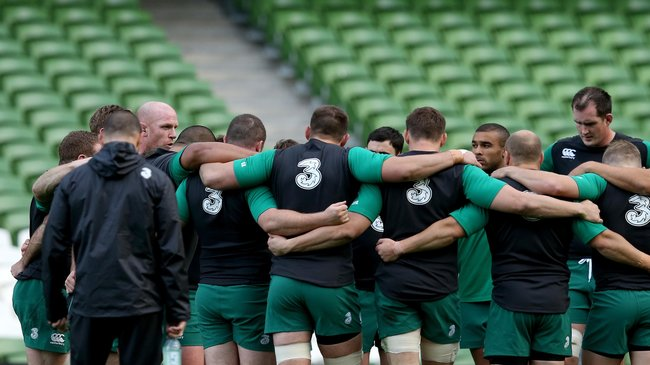 Ireland Captain's Run At The Aviva Stadium, Friday, November 7, 2014