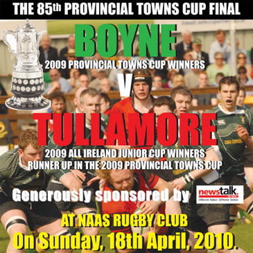 The Towns Cup final in Naas