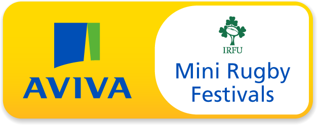 Aviva Mini Festivals
